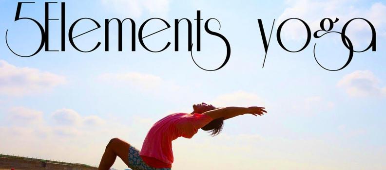 2016年2月28日(日) 山本俊朗WS Philosophy of Five Elements yoga 〜五大元素からの知恵を養う〜